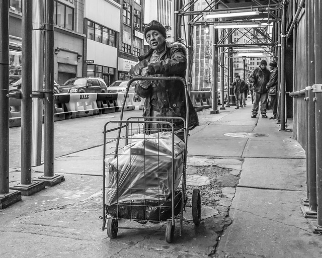 Shopping Cart, Willoughby St. Brooklyn