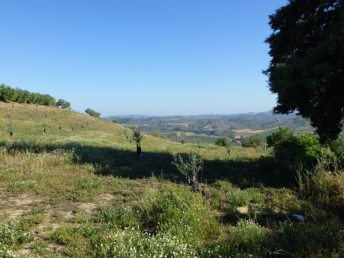Cortijo Rosario: view from top of hill
