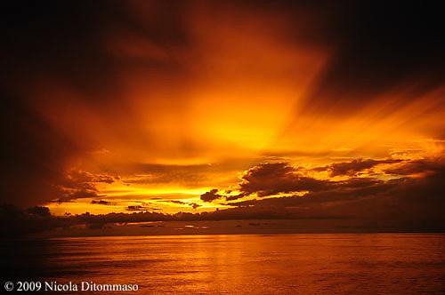 sunset sun fire nikon warm flames warmth surreal atlantic heat firebird mythology mystic disneycruise d300 nicoladitommaso