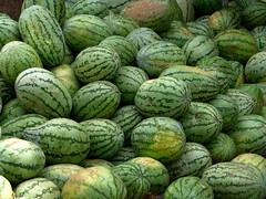 vegetable(0.0), field(0.0), honeydew(0.0), figleaf gourd(0.0), plant(0.0), winter squash(0.0), cucurbita(0.0), gourd(0.0), watermelon(1.0), produce(1.0), fruit(1.0), food(1.0),