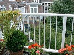 greenhouse(0.0), backyard(0.0), pergola(0.0), porch(0.0), yard(0.0), orangery(0.0), cottage(0.0), outdoor structure(1.0), shrub(1.0), window(1.0), flower(1.0), garden(1.0), sash window(1.0), balcony(1.0),