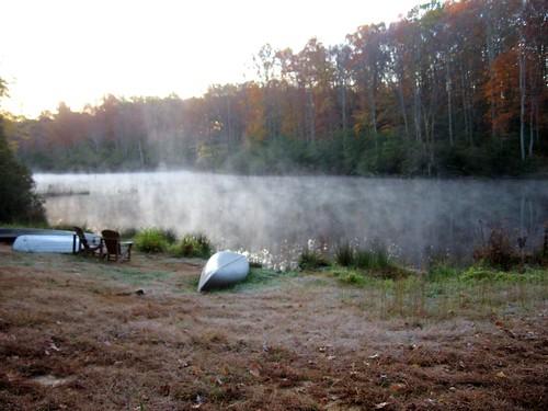 autumn lake virginia mahockney mahockneygardens