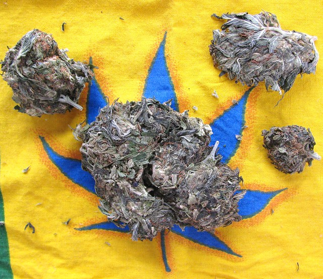 how to break up weed without a grinder