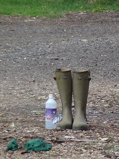 Wellies at the farm
