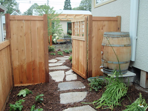 Sideyard gate and rain barrel
