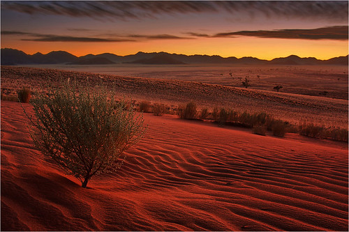 life africa light sunset red sky sunrise sand warm desert patterns dunes peaceful namibia