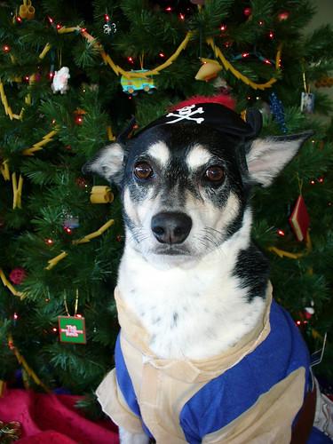 2009-12-01 - Peedee Pirate - 0003