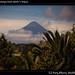 Volcan Acatenango from Jaime's house