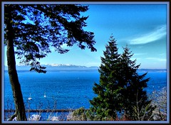 Taken from a bluff high above Puget Sound