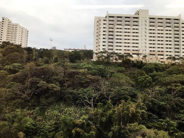 004_從機場到台北_029