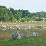 Some of thousands of menhirs - Carnac