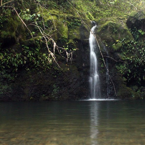 A quiet waterfall found along the road to Hana.