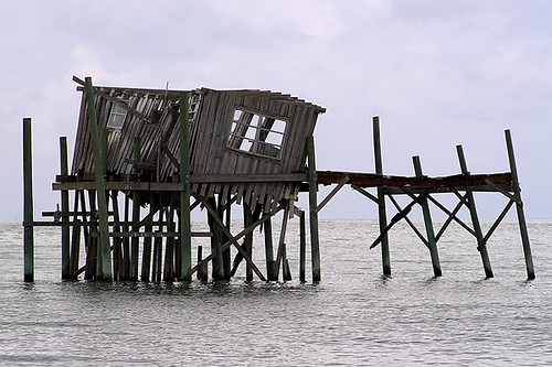 wood old travel vacation usa fish building abandoned tourism gulfofmexico water buildings mexico outside photography coast wooden fishing ruins photographer gulf florida getaway empty september northamerica oysters shack fl crabs author fla 1985 2009 cedarkey deteriorated levy bldg 1959 fishingvillage crabbing gulfcoast deteriorating loveshack fishingshack houseonstilts honeymoonsuite sharkstooth oceanfrontproperty canoneos30d georgewalton michellepearson 09022009 20090902 henrytaylor margaretthomas smweb philipthomas hurricanelena hurricaneelena copyrightedallrightsreserved thomasguesthouse 090209 sep022009 ruinshoneymooncottage img0027663 colgeorgewalton sharktoothshoal cedarkeyphotographer cedarkeyphotography authorgeorgewalton