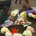 Trying to Stay Dry and Warm - Kodaikanal, India