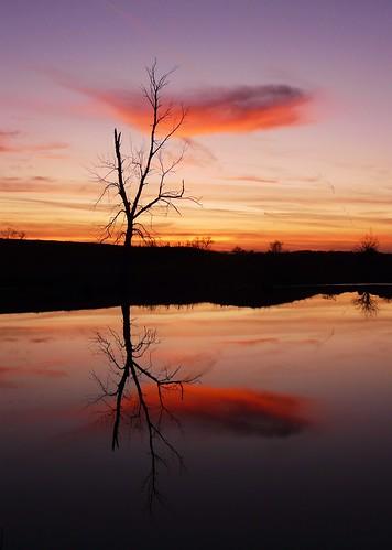 sunsets reflexions justclouds vosplusbellesphotos