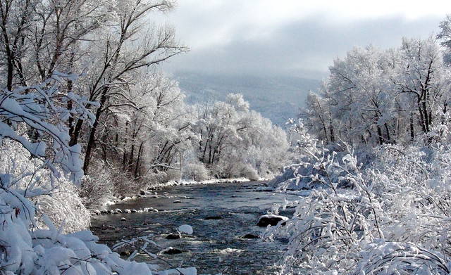 Yampa River Winter Steamboat Springs Colorado By