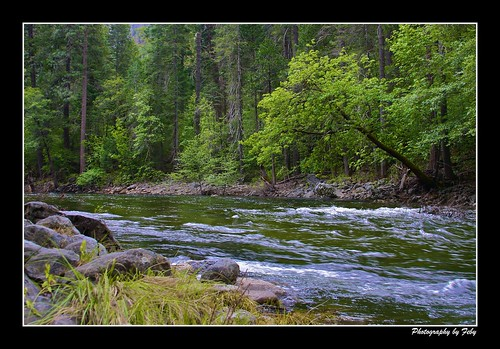 Yosemite National Park: Merced River