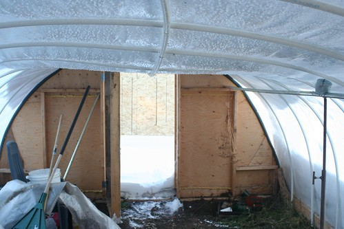 My hoop frame greenhouse in the snow alberta home gardening for 3999 roof