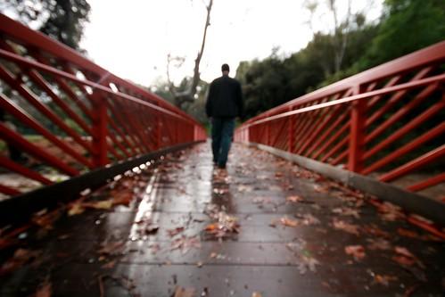 The bridges I burn will light my way home