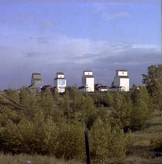 Alberta Wheat Pool and United Grain Growers grain elevators in Aldersyde, Alberta