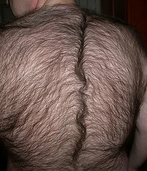 Men with hairy back pictures