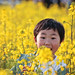 2011 Yuchae Flower Festival by DMac 5D Mark II