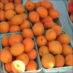 fruit tree(0.0), clementine(0.0), orange(0.0), plant(0.0), loquat(0.0), tangelo(0.0), bitter orange(0.0), tangerine(0.0), persimmon(0.0), apricot(1.0), produce(1.0), fruit(1.0), food(1.0), mandarin orange(1.0),
