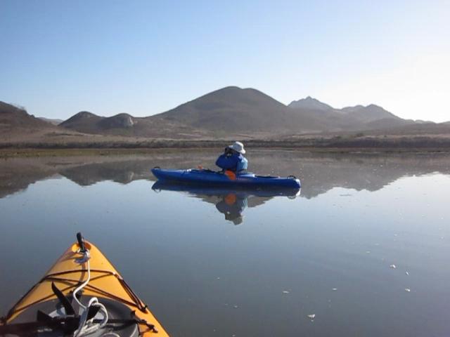 Ibis Bay Kayak Tour