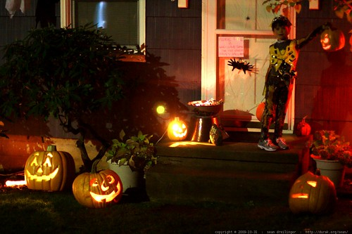 bumblebee at a self serve trick or treat house    MG 7433