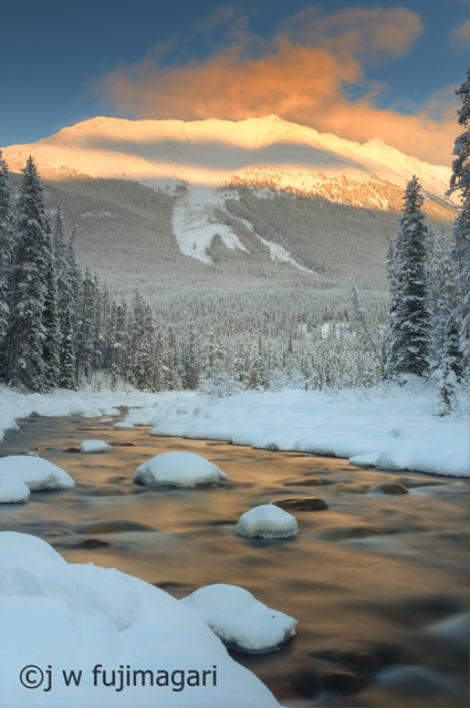 Evening Light Over the Sunwapta River