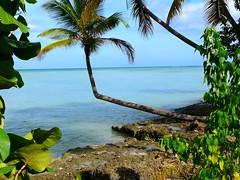 République Dominicaine, Punta Cana, Samana