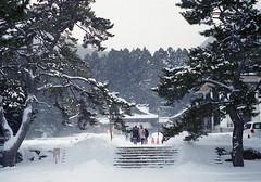 雪の中の初詣