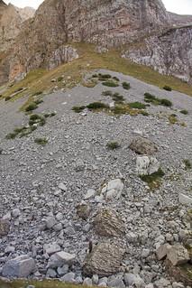 2015-08-09 4x4 czarnogora albania 185750 7524