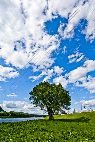 "newyork southerntier upstate broomecounty binghamton chenango river blue sky white clouds green tree grass hills water silhouette power lines landscape johnwilliamsphd ""john williams phd"" "" copyright john c williams"" johncwilliams projectweather day cloudy"
