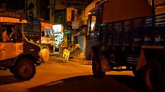 Madurai - Lorries in the Night
