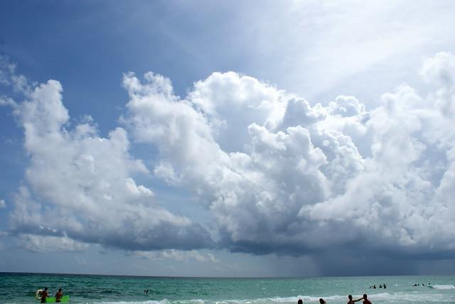 Destin Florida Condo Rentals On The Beach Pet Friendly