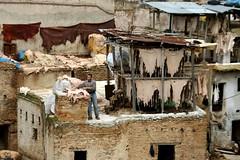 village, wood, slum,
