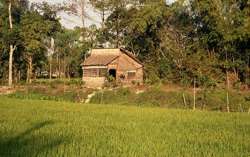 homes landscapes asia vietnam 1995 haugiang scanneg gpsapproximate timeincorrect