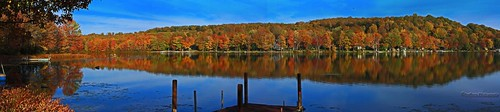 autumn trees lake fall nature water leaves landscape pretty natural panoramic northeast pennsylvannia naturelovers lakehenry lenberry