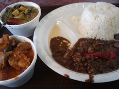 meal(1.0), stew(1.0), lunch(1.0), curry(1.0), steamed rice(1.0), meat(1.0), food(1.0), dish(1.0), nasi lemak(1.0), cuisine(1.0),