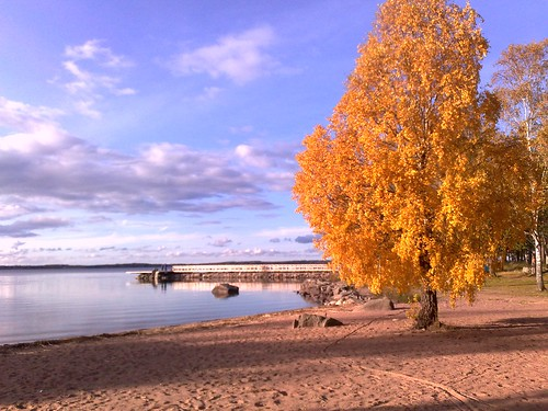 Fall at Lake Vänern in Sweden #2