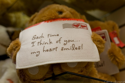 Teddy Bear has a Message For You