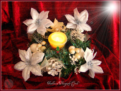 Holiday Season~and may the Light Shine Bright for You