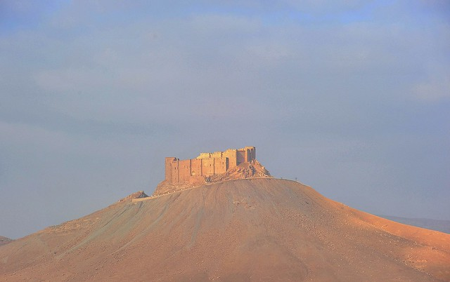 340 Palmyra (Syria)
