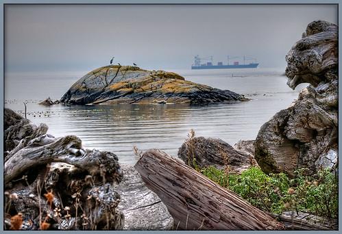 ocean nature landscape vancouverisland pacificocean victoriabc albertheadlagoon mywinners brillianteyejewel