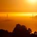 Golden Gate Bridge (70 of 365) by Pye42