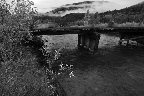 old bridge flowers bw mist water clouds sunrise river mountian hollumsphotographynikond90 coloradohollumsphotographynikond90