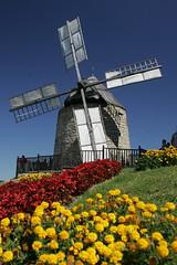 moulin à vent de Lautrec