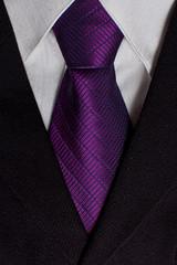 arm(0.0), pink(0.0), pattern(1.0), textile(1.0), magenta(1.0), purple(1.0), violet(1.0), lavender(1.0), necktie(1.0),
