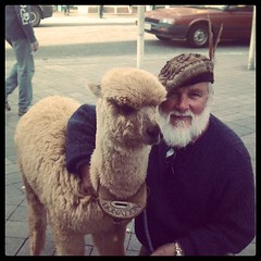 Man with alpaca in the mall. Asked if I knew I was wearing an outfit in Dutch flag colours